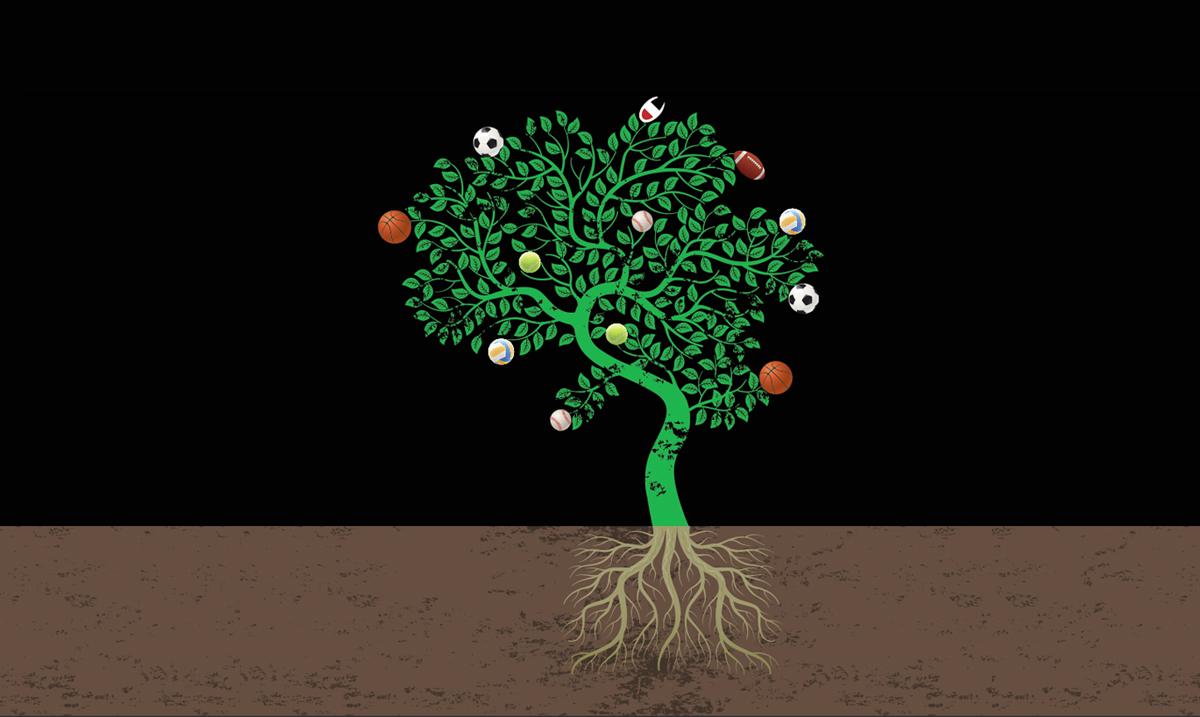 Tree of Life: Concept Store, Champion Europe, Salò Italy.